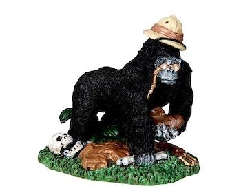 Curious Kong