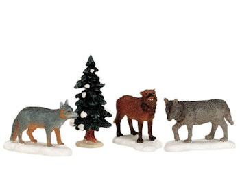 Woodland Wolves