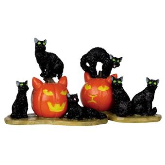 Halloween Cats, Set Of 2