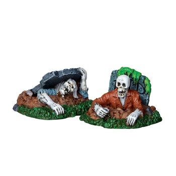 Zombies, Set Of 2