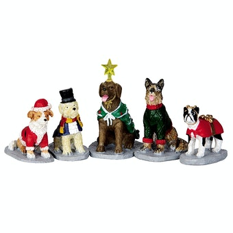 Costumed Canines  Set Of 5