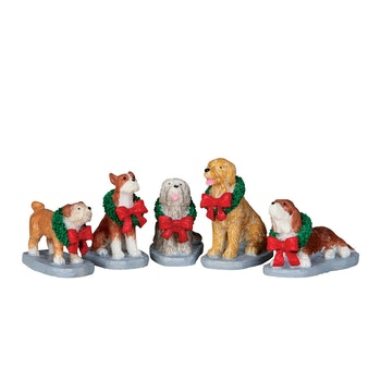 Christmas Pooch, Set Of 5