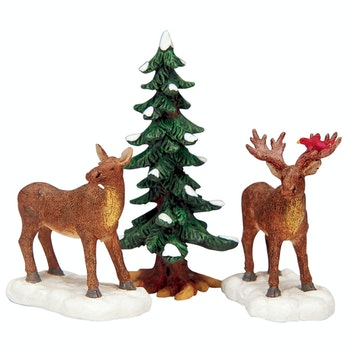 Mr. And Mrs. Moose, Set Of 3
