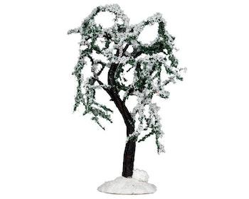 Snowy Ash Tree