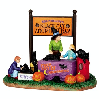 Black Cat Adoption