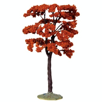 Yellowwood Tree  Large