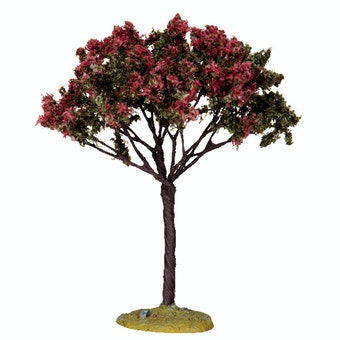 Linden Tree  Medium