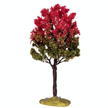 Black Tupelo Tree  Medium