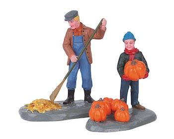 Harvest Clean-Up