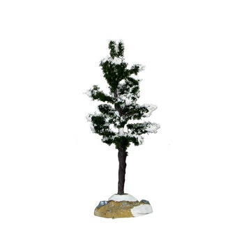 Conifer Tree, Small