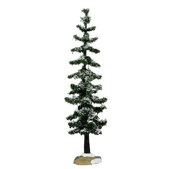 Blue Spruce Tree, Large