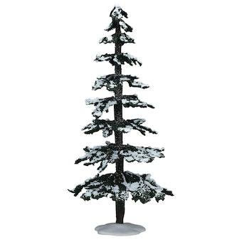"""12"""" Snowy Cedar"""