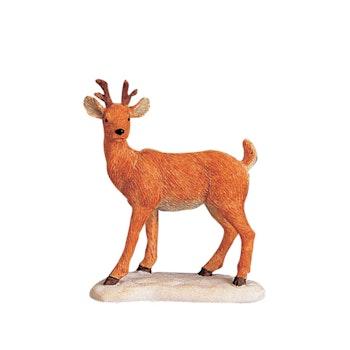Deer On The Hoof