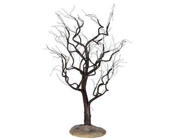 Eerie Elm Tree
