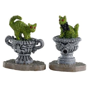 Haunted Topiary