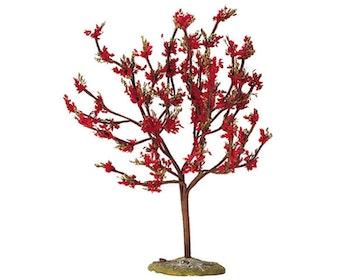Red Plum Large