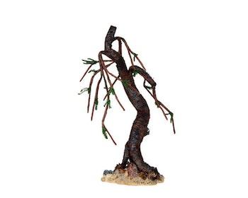 Eerie Oak Tree Medium
