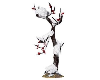 Winter Oak Tree Large