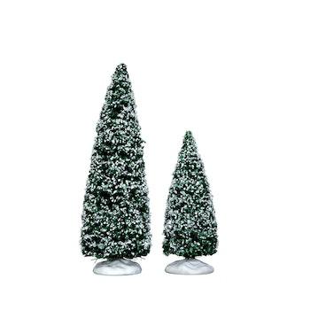 Snowy Juniper Tree, Medium & Small, Set Of 2