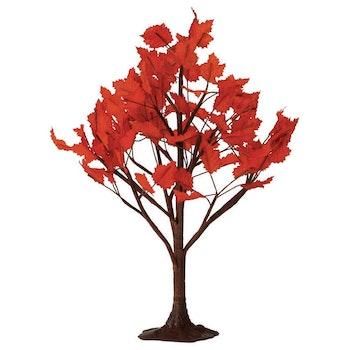 9 Maple Tree
