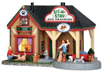 Sit-N-Stay Dog Training