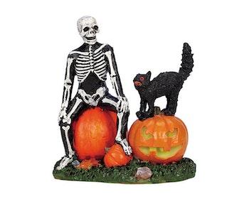 Halloween Companions