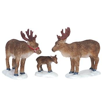 Reindeer, Set Of 3