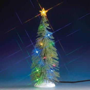 Chasing Multi Light Spruce Tree, Large