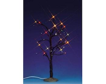 Lighted Elm Tree