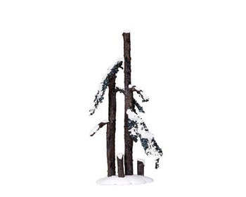 Hickory Tree Medium