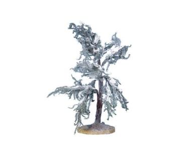 Douglas Fir Tree Medium