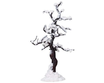 Snowy Alamo Tree - A Large