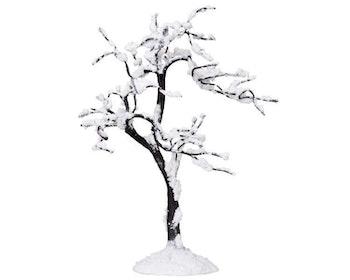 Snowy Alamo Tree - C Large
