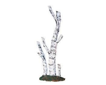 Paper Birch Tree Medium