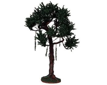Ash Tree Extra Large