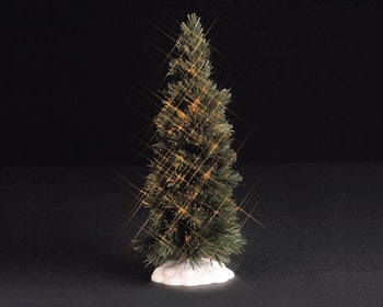 Shimmering Spruce Clear Extra Large