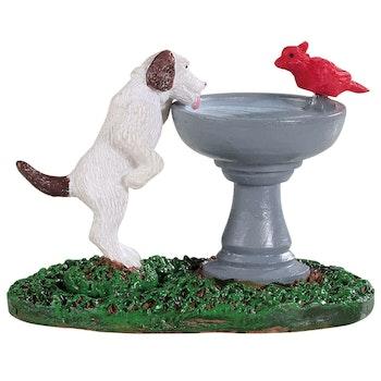 Bird Bath Dog Fountain