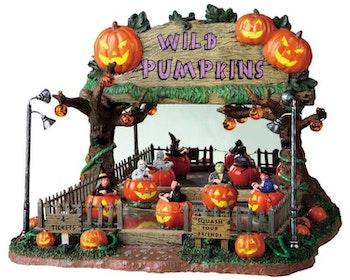 Wild Pumpkin Ride