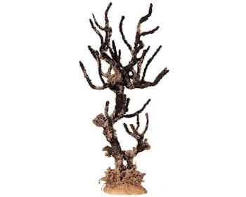 Dying Elm Tree Large