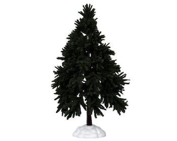 Evergreen Fir Tree Extra Large