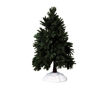Evergreen Fir Tree Large
