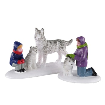 Future Sled Dogs
