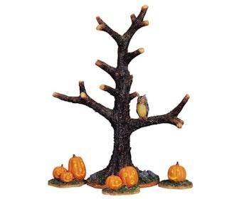 Spooky Tree Pumpkins