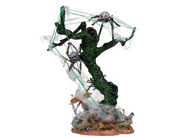 Skull Spider Tree