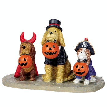 Trick Or Dog Treats