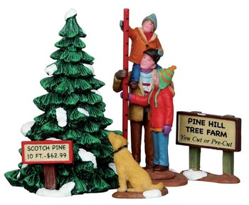 Picking The Tallest Tree, Set Of 4