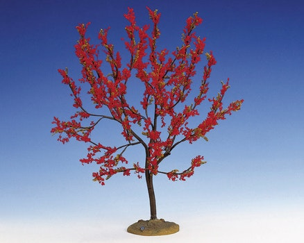 Red Plum Extra Large