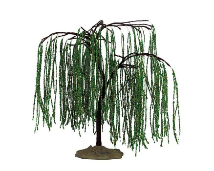 Weeping Willow Medium