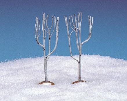 Dry Tree Medium