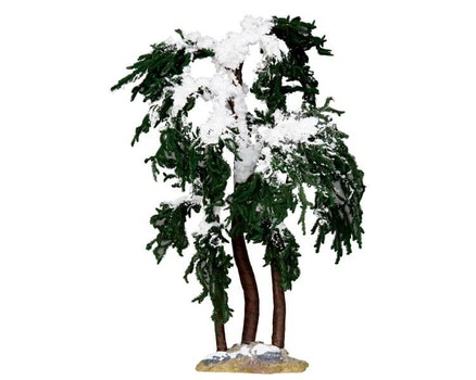 Snowy Mulberry Tree Large